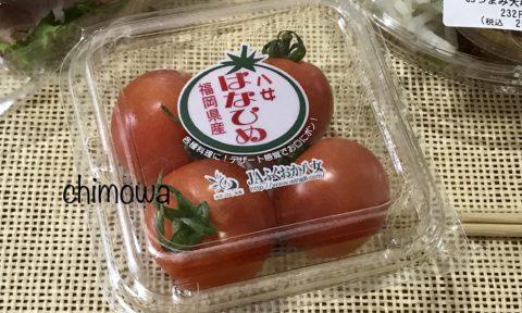 セブンミールから届いたミニトマトの写真