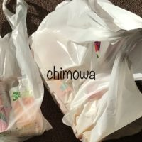 イトーヨーカドーネットスーパーから届いたレジ袋に入った商品の写真