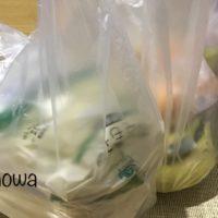 おうちでイオン レジ袋に入った状態で届いた食材の写真