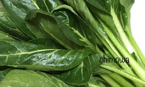 ミレーから届いた小松菜の写真