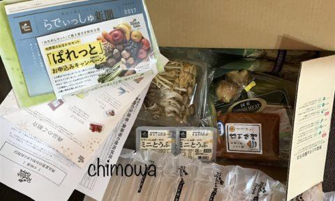 らでぃっしゅぼーやのお試しセットで届いた資料と食材の写真