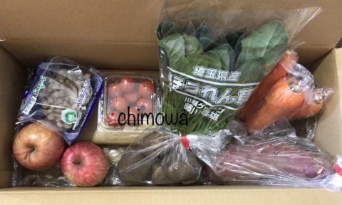 大地宅配から届いたお試しセット野菜6品とりんごの写真