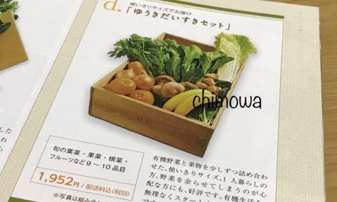 ビオ・マルシェ『入会のご案内』より野菜セットの最安値「ゆうきだいすきセット」9~10品目の写真