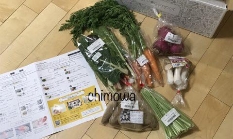好みで選んだココノミ初回野菜6品(スイスチャード、葉付き人参、あかくらかぶ、エリンギ、鳴門金時、キボウシ)の写真