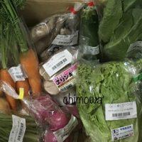 ココノミから届いた農薬・化学肥料不使用、一部有機JASマーク付き野菜の写真