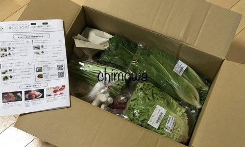 ココノミの野菜の梱包状態(ダンボールを開封したところ)の写真。紙でくるんである野菜も